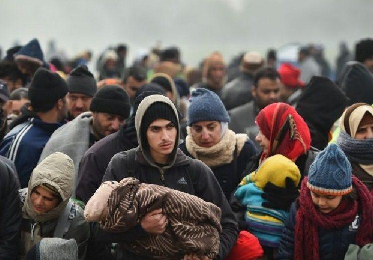 Migrant Jasin